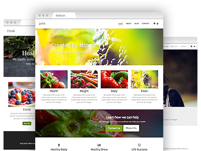 A selection of easy–to–redesign website templates